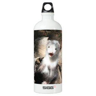 The Lookout Water Bottle