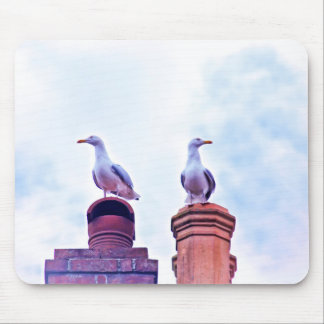 The Lookouts gull birds Mouse Pad