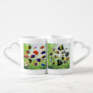 The love cup of Marine Angelfish