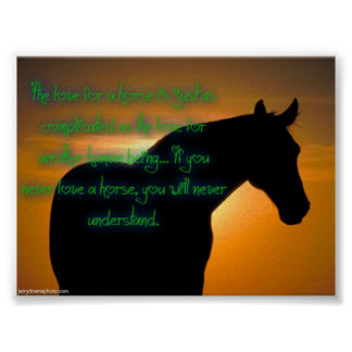The love for a horse poster. poster