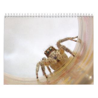 The Love of Bugs Calendar