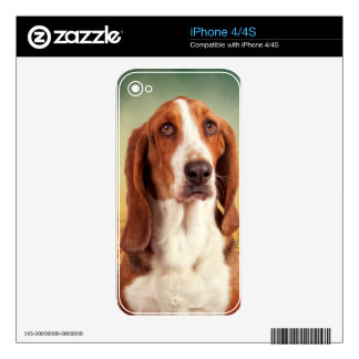 The Loveable Basset Hound Skins For iPhone 4S