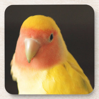 The Lovebird Beverage Coaster