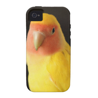 The Lovebird Vibe iPhone 4 Cases