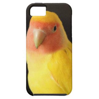 The Lovebird iPhone 5 Case