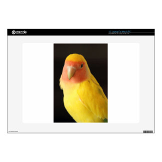 """The Lovebird Decal For 15"""" Laptop"""