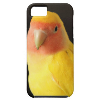 The Lovebird iPhone SE/5/5s Case