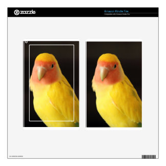 The Lovebird Kindle Fire Skins