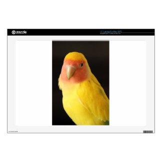 The Lovebird Skin For Laptop