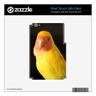 The Lovebird Skins For iPod Touch 4G