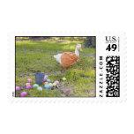 The Loyal Pekin Duck Stamp