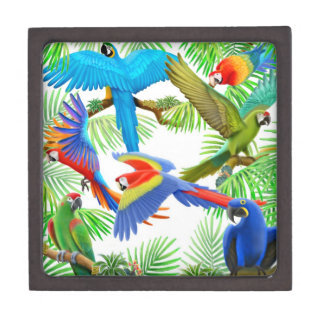 The Macaw Parrot Jungle Premium Gift Box