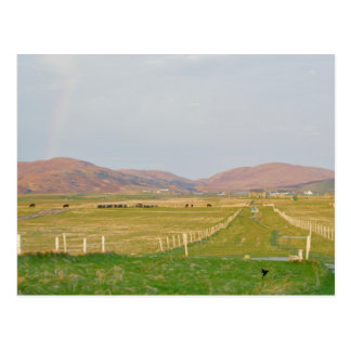 The Machair, Western Isle of Scotland Postcard