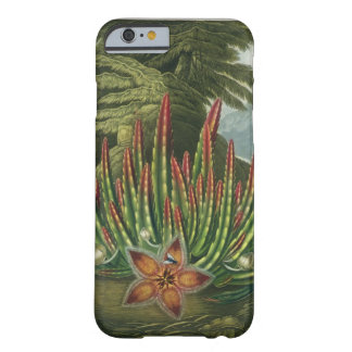 The Maggot-Bearing Stapelia, engraved by Stadler, Barely There iPhone 6 Case