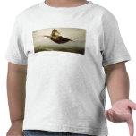 The Magic Carpet, 1880 T Shirt