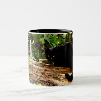 THE MAGIC OF BLACK CATS COFFEE MUGS
