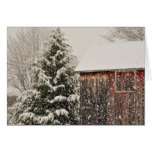 The Magic Of Winter Christmas Greeting Card