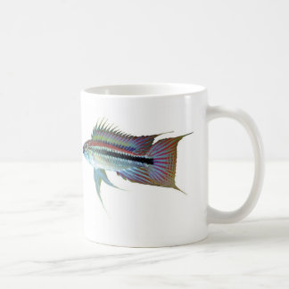 The magnetic cup of Apistgramma bitaeniata Classic White Coffee Mug