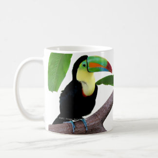 "The magnetic cup ""of Keel-billed Toucan"", No.01"