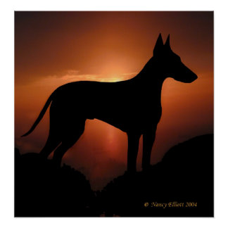 The Magnificent Manchester Terrier Poster