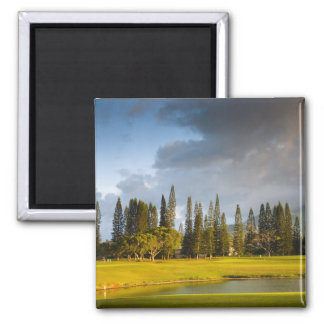 The Makai golf course in Princeville 2 Magnet