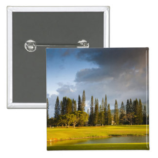 The Makai golf course in Princeville 2 Pinback Button