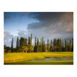 The Makai golf course in Princeville 2 Post Cards