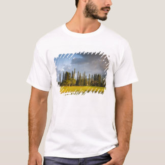 The Makai golf course in Princeville 2 T-Shirt