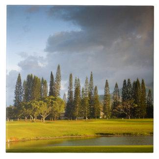 The Makai golf course in Princeville 2 Tile