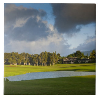 The Makai golf course in Princeville 4 Tile