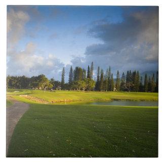 The Makai golf course in Princeville Ceramic Tile