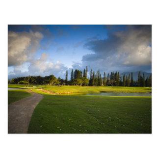 The Makai golf course in Princeville Postcard