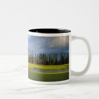 The Makai golf course in Princeville Two-Tone Coffee Mug