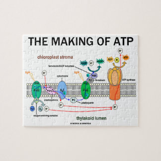 The Making Of ATP (Photosynthetic Attitude) Jigsaw Puzzle