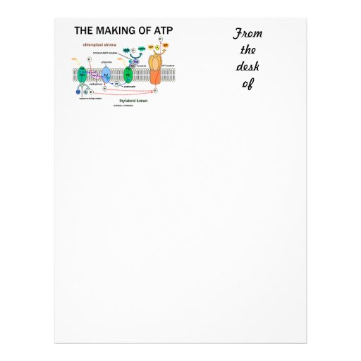 The Making Of ATP (Photosynthetic Attitude) Letterhead Template