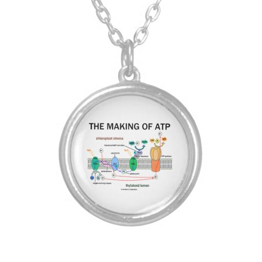 The Making Of ATP (Photosynthetic Attitude) Necklaces