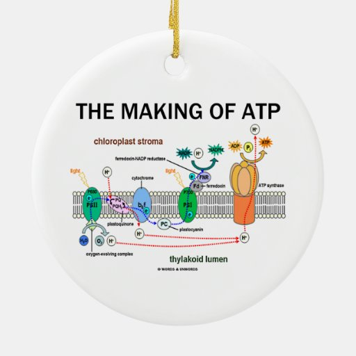 The Making Of ATP (Photosynthetic Attitude) Christmas Tree Ornaments