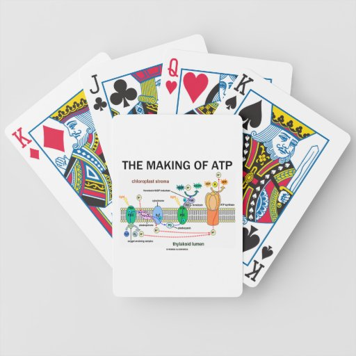 The Making Of ATP (Photosynthetic Attitude) Bicycle Poker Deck