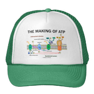 The Making Of ATP (Photosynthetic Attitude) Trucker Hat