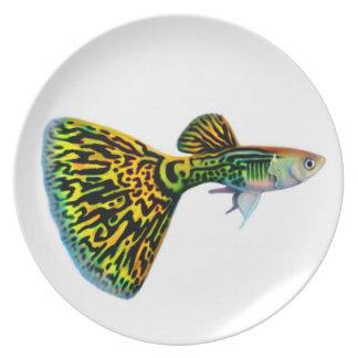 The Male Fancy Snakeskin Guppy Fish Plate