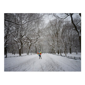 The Mall in Winter, Central Park, New York City Postcard
