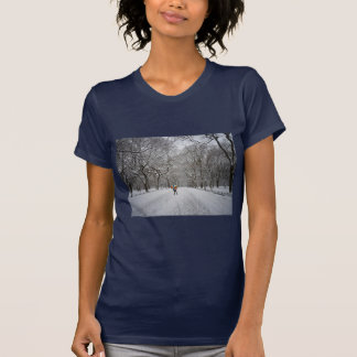 The Mall in Winter, Central Park, New York City T Shirt