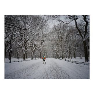 The Mall in Winter, Central Park, NYC, All Sizes Poster