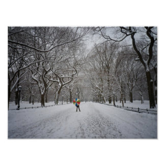 The Mall in Winter, Central Park, NYC, Small Posters