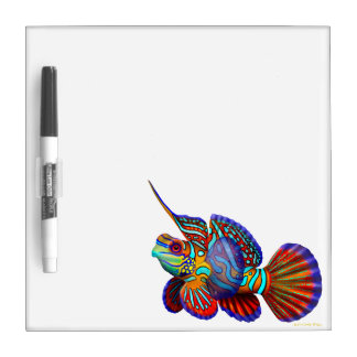 The Mandarin Dragonet Goby Fish Dry Erase Board
