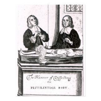 The Manner of Dissecting the Pestilential Body Postcard