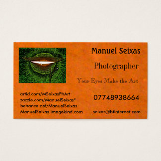 The Manuel Seixas Business Card