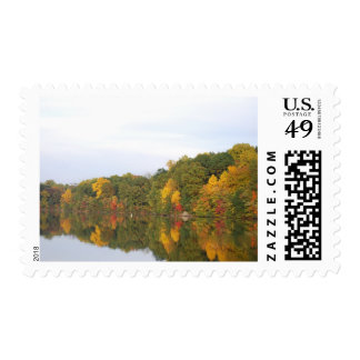 The Many Colors Of Fall Reflected Postage Stamp