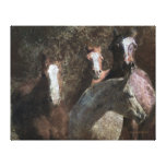 The Mares Stretched Canvas Prints