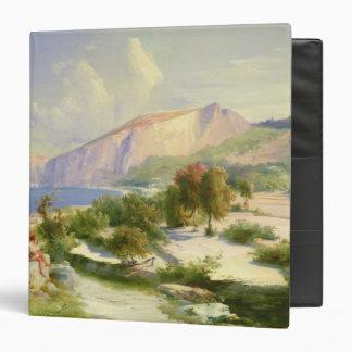 The Marina Grande Capri c 1829 Vinyl Binders